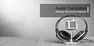 Audio Translation and Transcription Services